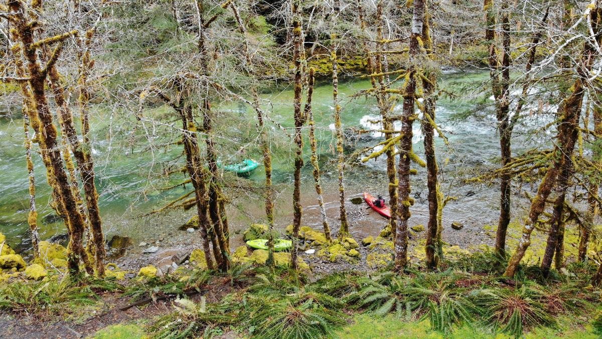 Quartzville Creek Oregon Wild Scenic